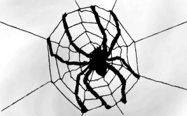 Spiderwebs & Cobwebs