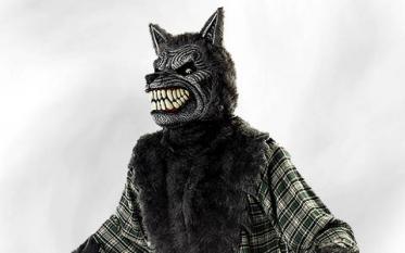 Wolf & Werewolf Costumes