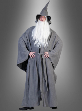 Grey Wise Wizard