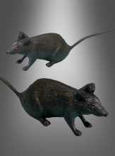 Rat Halloween Table decor