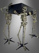 Skeleton Pall Bearers