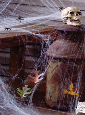 Giant Spider Web Decoration