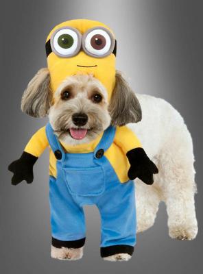 Minion Bob Dog Costume