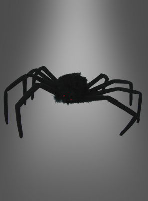 Schwarze Spinne 40 cm