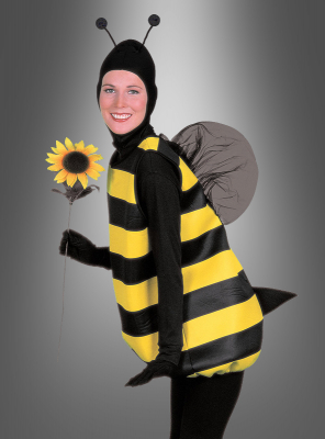 Bumble Bee costume classic