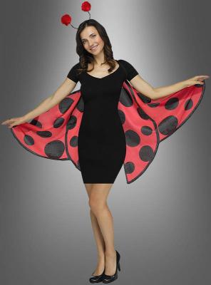 Lady Bug Soft Wings Set