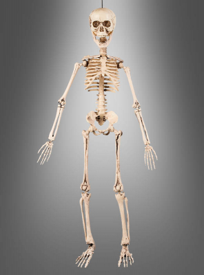 Movable Skeleton Decoration 50 cm