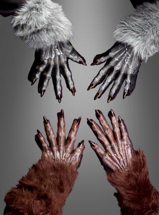 Werwolf Hände für Erwachsene