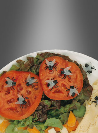 Halloween Creepy Flies Decoration