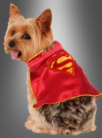 Supergirl Hundekostüm Cape