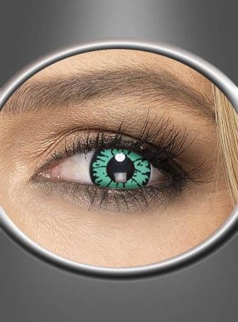 Grüne Reptil Tageslinsen