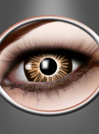Große Augen Farblinsen braun
