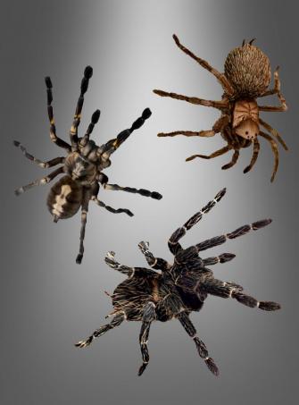 3-D Window Sticker Spiders