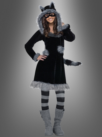 Cool Raccoon Teen Costume