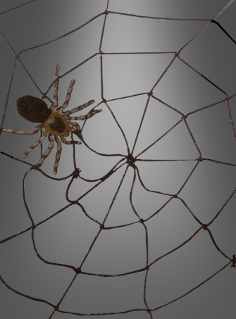 Stabiles Spinnennetz  150 cm