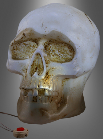 Light-up skull with sound