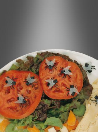 Halloween Deko Fliegen Insekten