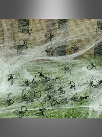 Schwarze Spinnen mit Ring