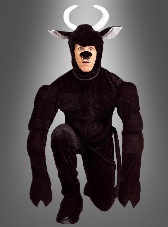 Toro the Terri-bull Bull