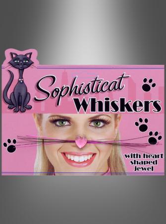 Katzen Schnurrhaare