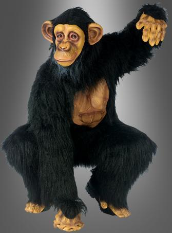 Complete Chimpanzee costume