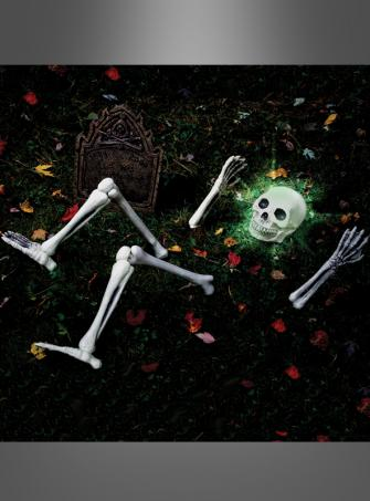 Up from down under skeletton zombie