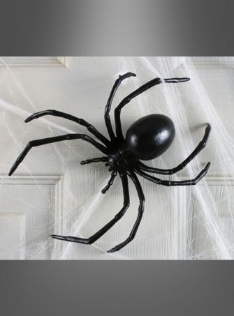 Black Widow Decoration