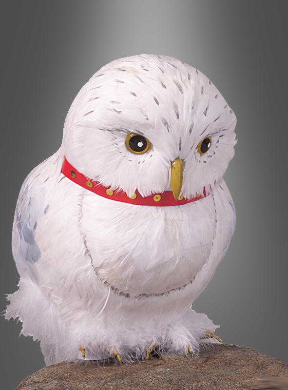 Harry Potter Accessoires Eule Hedwig