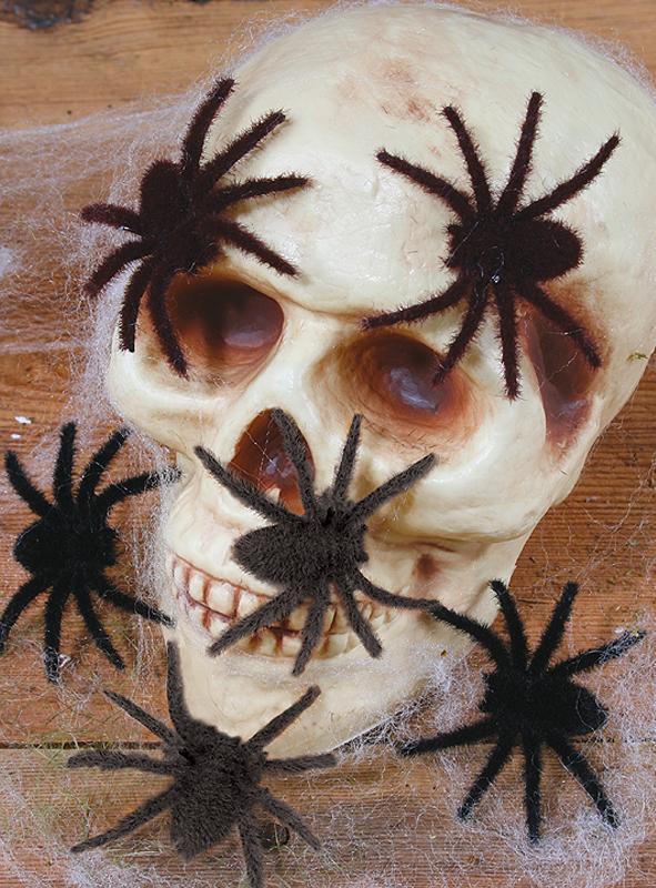 Mini hairy spiders