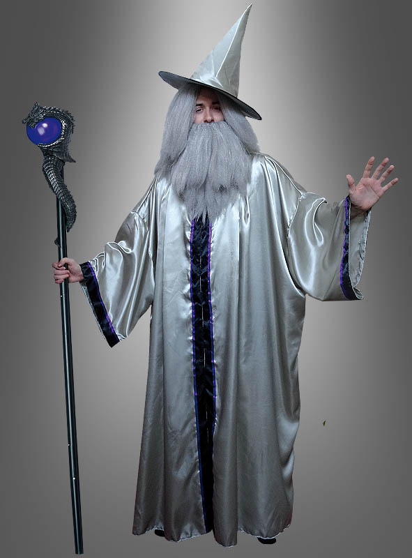 Silver Wizard Costume Adult with Wig