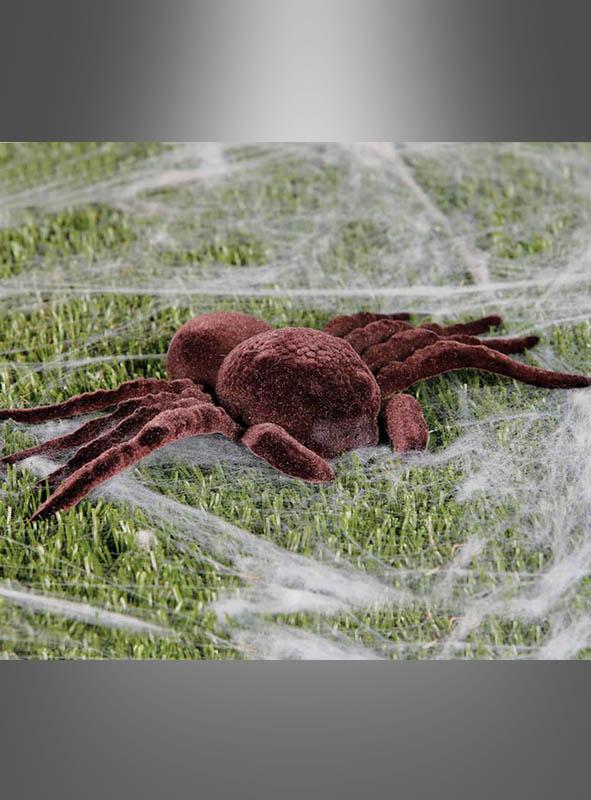 Spinnen braun 2er Pack