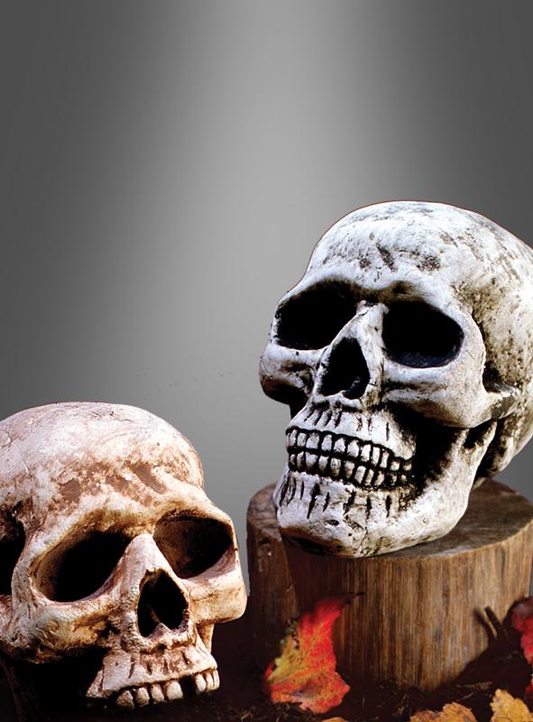 Polyfoam Skull Halloween Decoration