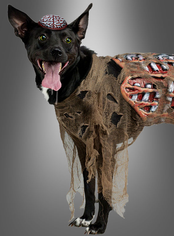 Zomibe Dog Costume