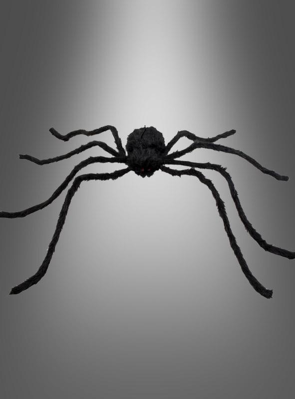 Black Spider 120 cm