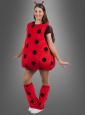 Plüsch Marienkäfer Kostüm