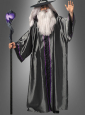 Silver Wizard Costume Adult