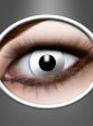 Kontaktlinsen Weiß Zombie Jahreslinsen