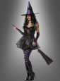 Wicked Witch Of The West costume