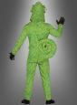 Chameleon Costume Adult